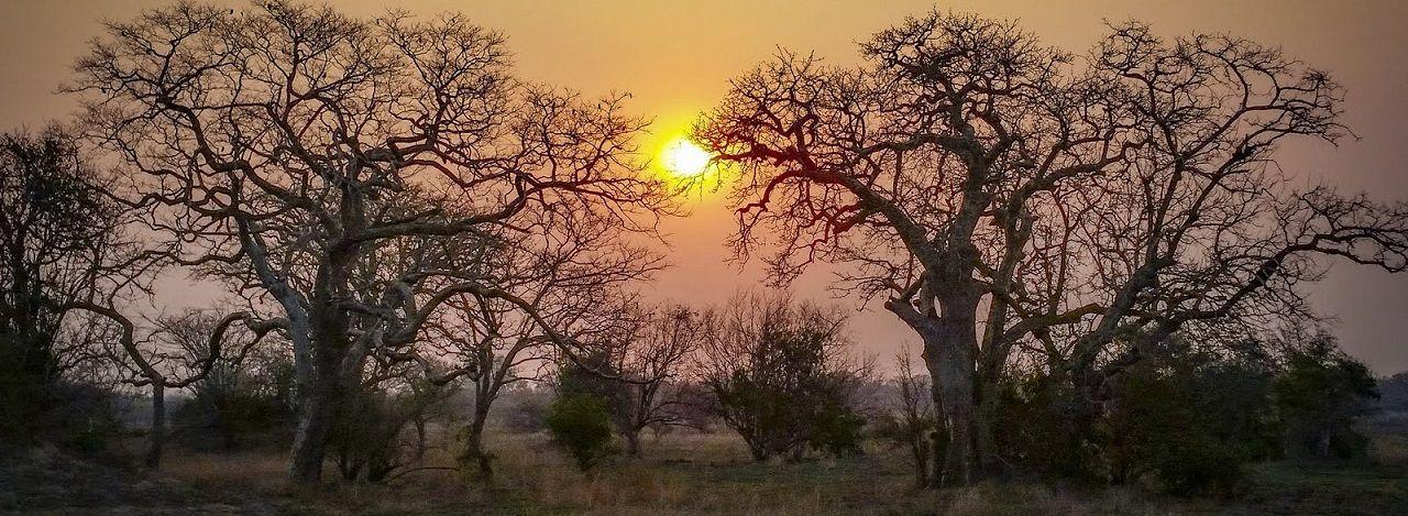 Pôr-do-sol da Gorongosa